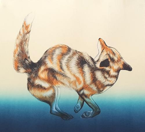 Roadside attraction: Fox