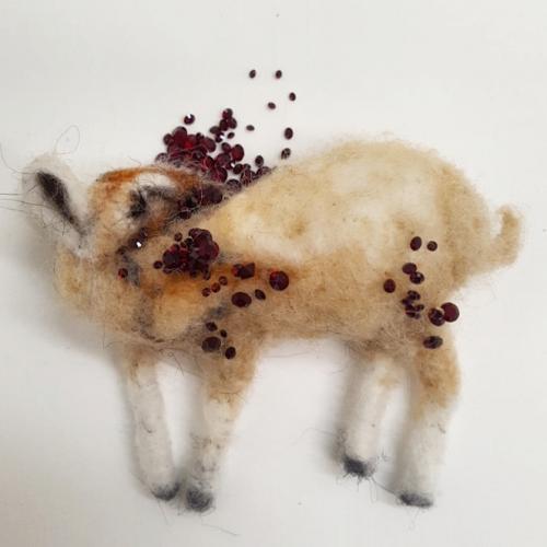 Baby Goat Roadkill