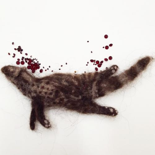 Civet Roadkill