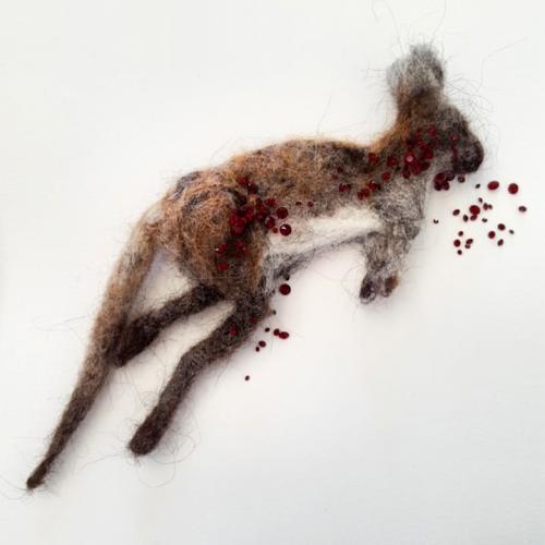Kangaroo Roadkill