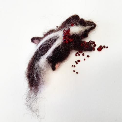 Skunk Roadkill