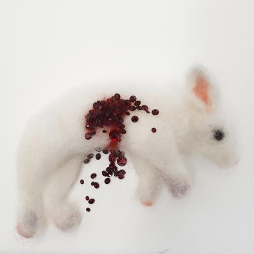 White Bunny Roadkill